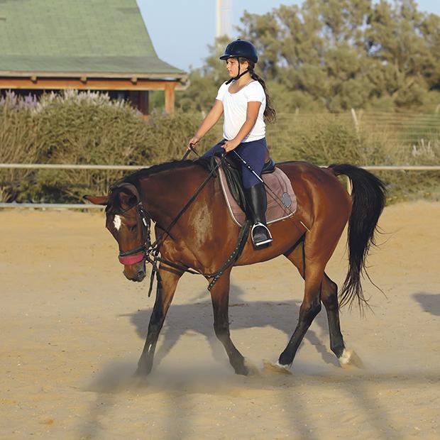 Jazda konna – sport i nauka odpowiedzialności w jednym